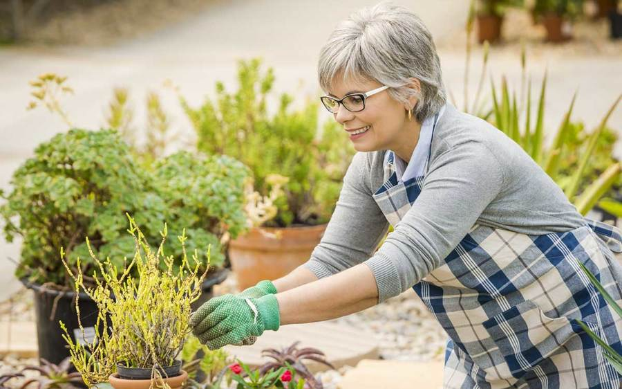 Woman works at gardening after successful brain injury therapy and treatments.