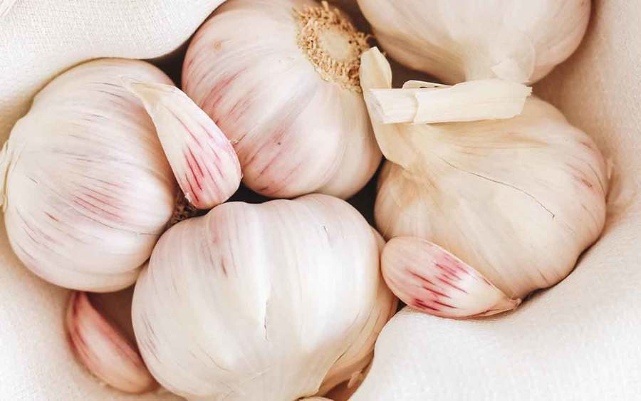 A group of white garlic bulbs represent the types of superfoods you can plant in your garden.
