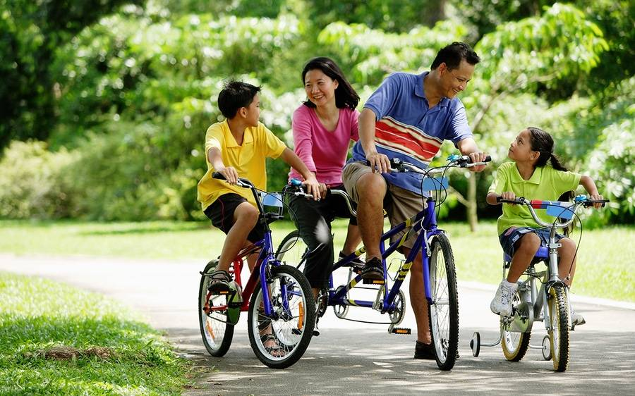 A family of four ride blue bicycles in a park.