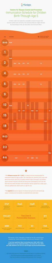 Infographic Childhood Vaccine Schedule 150×735