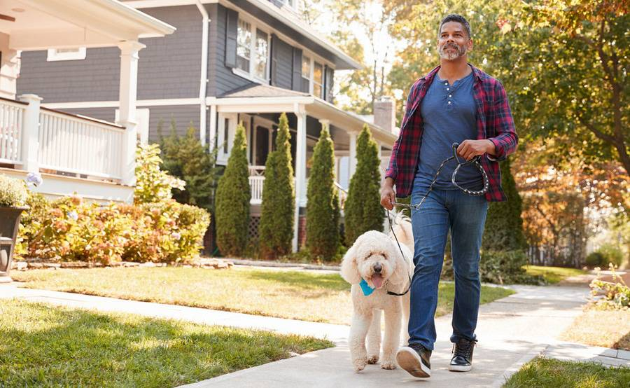 A man walking a dog through a residential neighborhood on a sunny day.