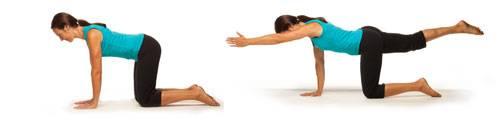 Integrative - Spinal Balance