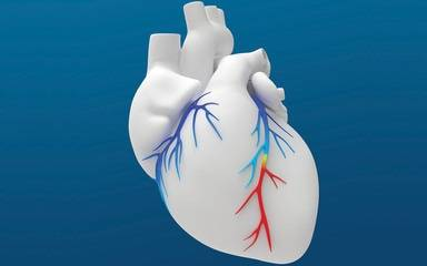 A rendering of a human heart against a blue background