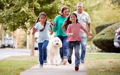 A family of four enjoys a brisk walk on a sunny day, one of many summer activities recommended for the whole family.
