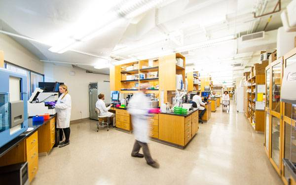 Scripps Translational Science Institute (STSI) has launched a clinical trial, the Molecular Autopsy Study. Researchers conducting the study hope that DNA sequencing can, for the first time, determine the root cause of sudden unexpected death in many families.